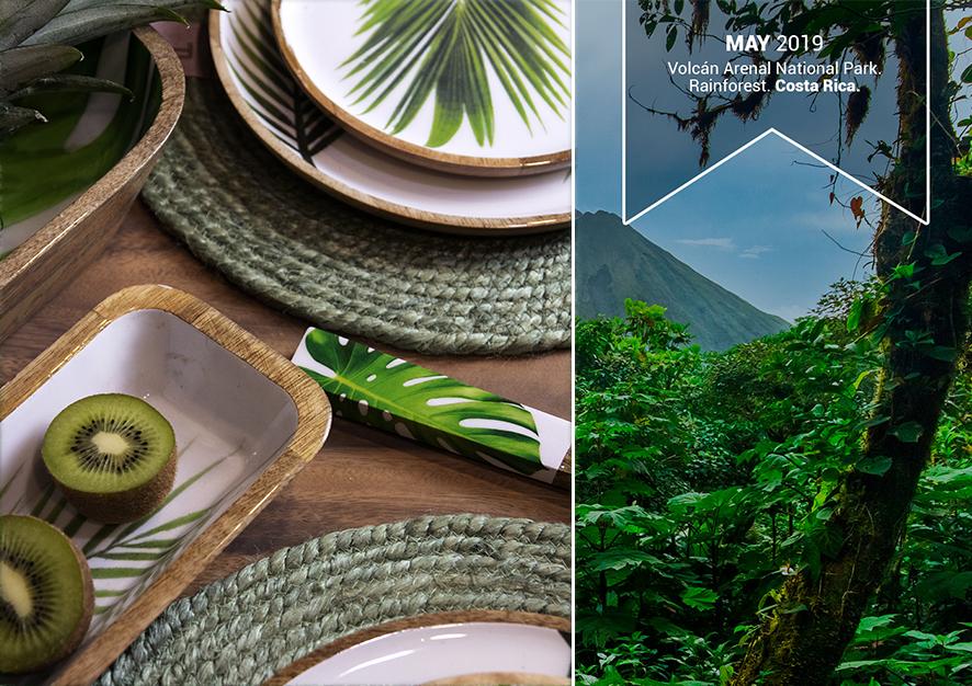 Naturaleza y Sostenibilidad: Parque Nacional Volcán Arenal, Rainforest. Costa Rica